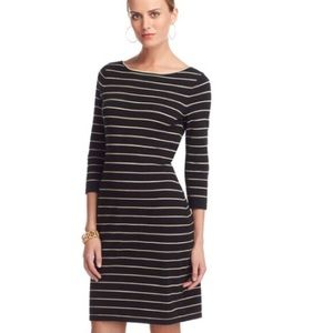 Chaps black and gold striped sweater dress!!